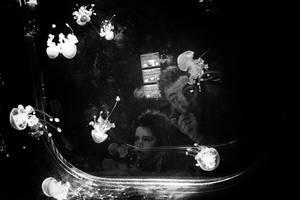 Jellyfish tank by myraincheck