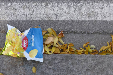 Autumn Flavour by myraincheck