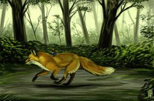 Run Swift by Lelia