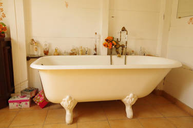 Vintage bathtub and parfume bottles by A1Z2E3R