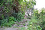 Old staircase in stones between vegetations by A1Z2E3R