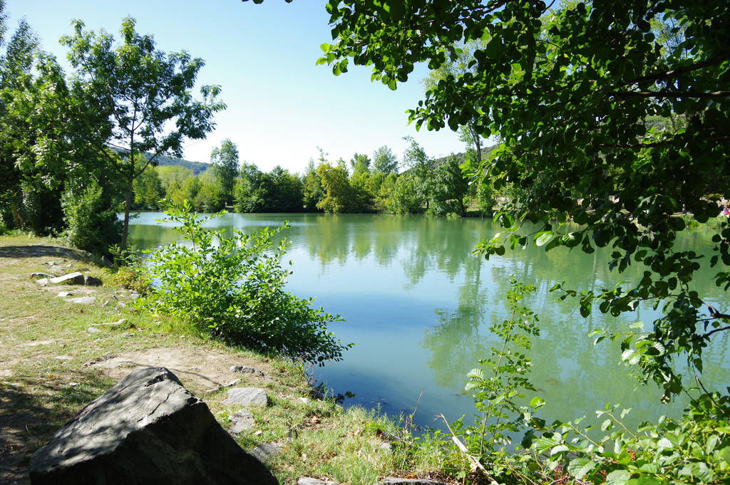 Pond in summer by A1Z2E3R