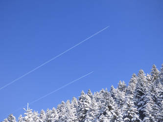 Planes skiing over the snowy fir trees by A1Z2E3R