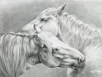 pair of gray horses by LittleMonster8