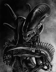 Xenomorph by freakingfabulous