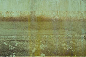 Green Metal Texture 01 by SimoonMurray