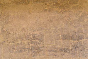 Cracked Plaster Texture 01 by SimoonMurray