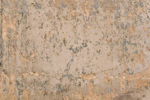 Cracked Plaster Texture 02 by SimoonMurray