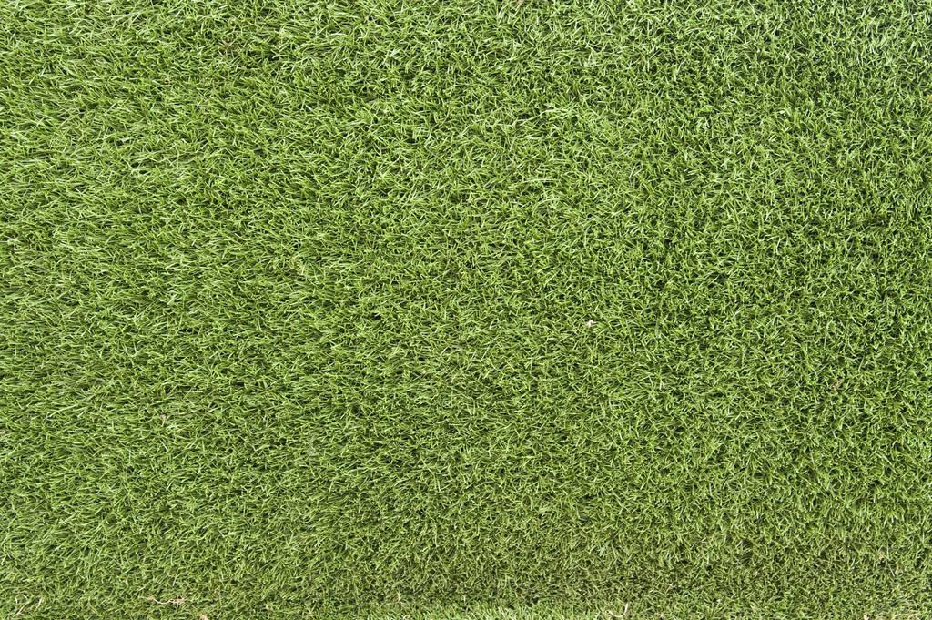 Grass Texture 02 by SimoonMurray