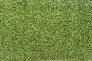 Grass Texture 02 by SimoonMurray