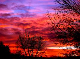 Fire Sky by Davina74
