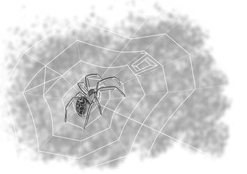 Garden spider illustration by E-be