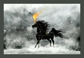 Vinter Flamma by Losmios
