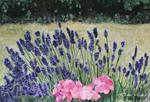 Lavender Fields pt 10 by traciewayling