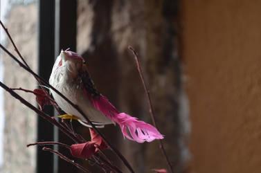 Little Bird by emmix0392