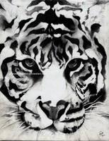 tiger. [2012] by CheyenneDrake