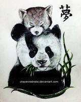 pandas. [2015] by CheyenneDrake