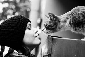 she, cat by Crashka