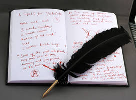 Spell book and Quill by Sassy-Stock