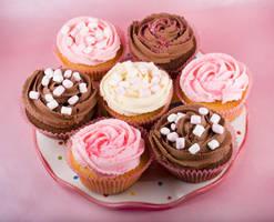 Cake 8 - Stock by Sassy-Stock