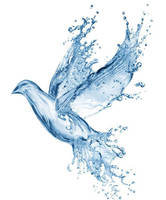 blue dove by VasiDgallery