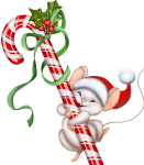 christmas-mouse by VDragosPhotography