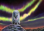 Aurora Borealis by Maquenda