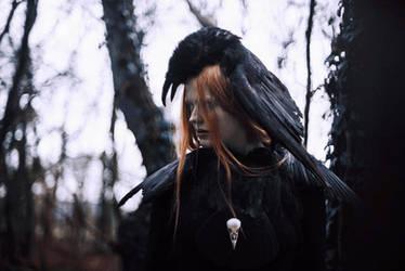 Raven Heart by Maquenda