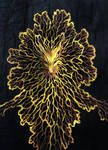 Physarum Polycephalum by Maquenda