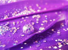Purple Explosion by MateaLoncar