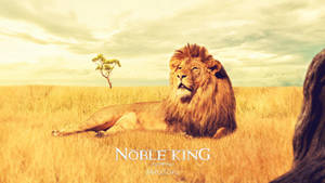 Noble King by Pincons