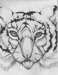 Tiger-2 by Shevaol
