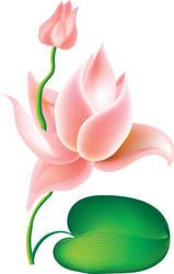 Vector Flower by Shevaol