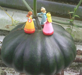 super mario princess pumpking by earthbouds
