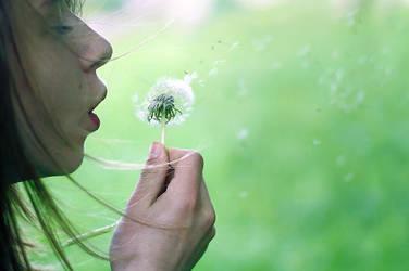 Dandelion Wish by Anawielle