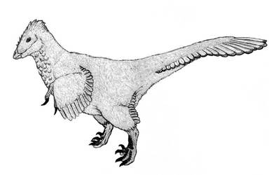 Balaur bondoc revisited uncolored by triggamafia
