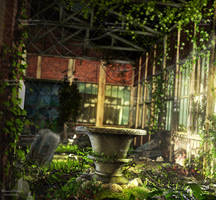 Poison Ivy Domain Stock Background 3 by bonbonka
