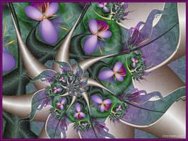 Wild Violets by Velvet--Glove