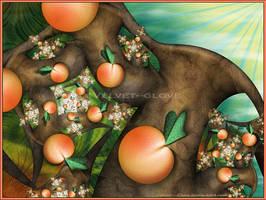 Just Peachy by Velvet--Glove