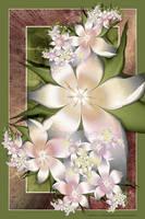 Summer Blossom by Velvet--Glove