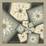 The Flower Gallery by Velvet--Glove