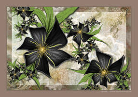 Fleur Noire by Velvet--Glove