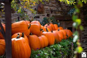 Halloween -  gettin' in the mood by snuglyPanda