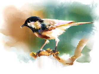 Bird1 by xiaxuegao