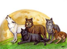 Wolf's Rain Cast by guardiansandi