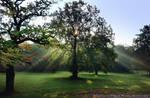Happy Autumn Equinox! by wiebkerost