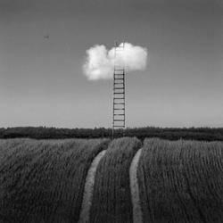 The Ladder by Kleemass