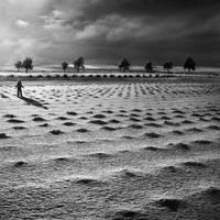 Moonfield by Kleemass