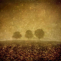 Trio by Kleemass