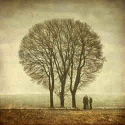 Three by Kleemass